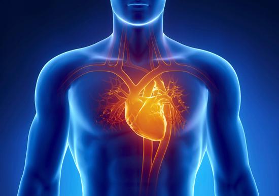 Упражнение «Сгибание пальцев»: лечим заболевания сердечно-сосудистой системы и головного мозга