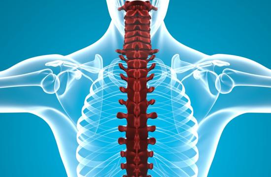 Растяжение грудного отдела позвоночника
